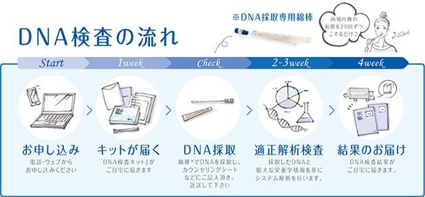 DNA検査の流れ