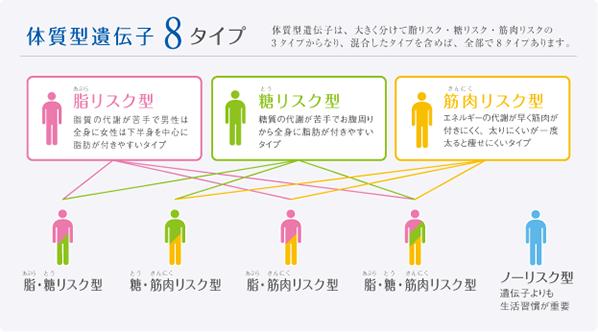 体質型遺伝子8タイプ